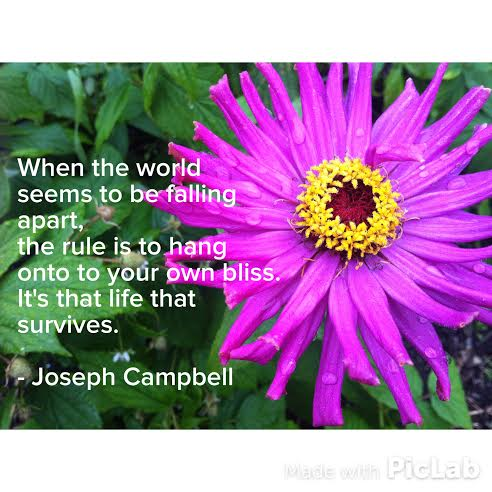 Joseph Campbell 3-9-2015